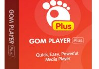 GOM Player Plus 2.3.62.5326 Crack With Serial Key Download 2021